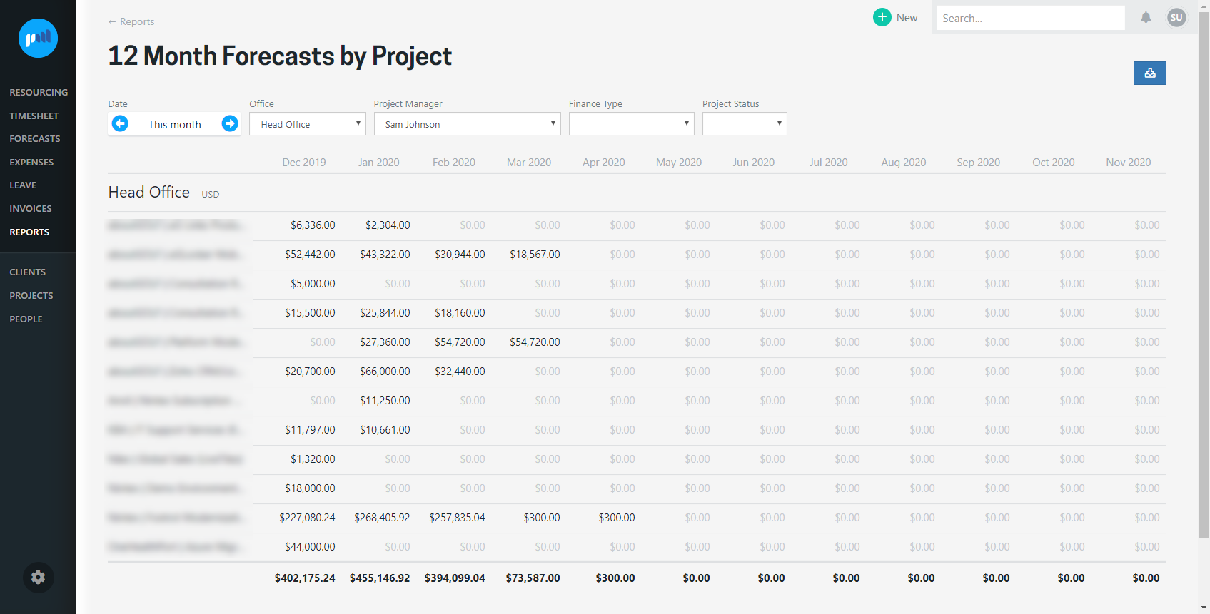 12 month forecast reports by project and company